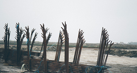 ilha-dos-puxadoiros-tony-martins-ostras-sushi-ria-aveiro-sal-salinas-salicornia-bebespontocomes-art