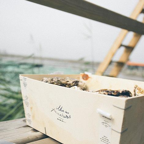 ilha-dos-puxadoiros-tony-martins-ostras-sushi-ria-aveiro-sal-salinas-salicornia-bebespontocomes-caixa-oysters