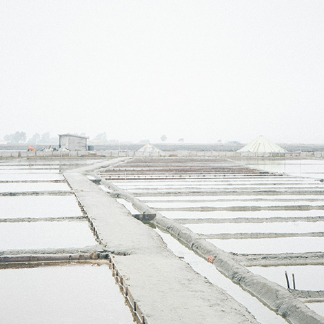 ilha-dos-puxadoiros-tony-martins-ostras-sushi-ria-aveiro-sal-salinas-salicornia-bebespontocomes-marinhas-portugal