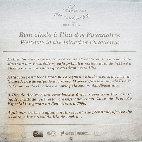 ilha-dos-puxadoiros-tony-martins-ostras-sushi-ria-aveiro-sal-salinas-salicornia-bebespontocomes-painel-bem-vindo