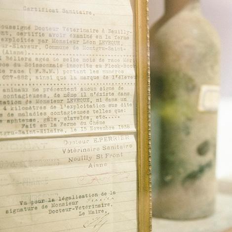 documentos--vinho-j-jose-sousa-2011-adega-jose-maria-da-fonseca-janela-indiscreta-bebespontocomes