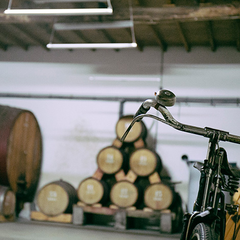 bicicleta-adega-garrafeira-quinta-bageiras-vinho-avo-fausto-2014-bairrada-bebespontocomes