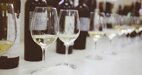 rectangular-garrafas-mosto-social-adega-cantanhede-bairrada-arinto-osvaldo-amado-prova-bebespontocomes