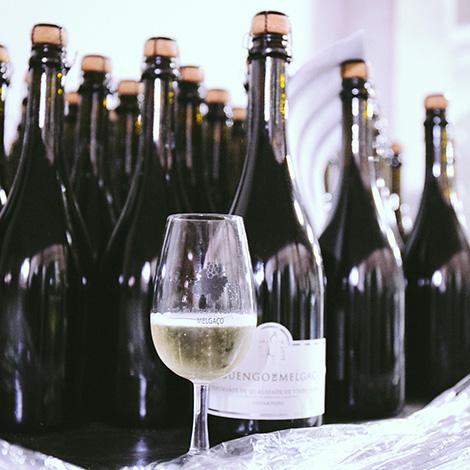 quadrada-garrafas-reguengo-melgaco-vinho-verde-hotel-alvarinho-adega-terroir-bebespontocomes